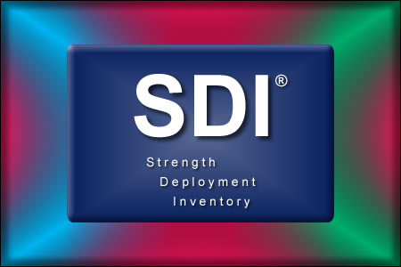 SDI Team Day